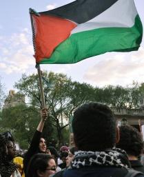 46 Palestine